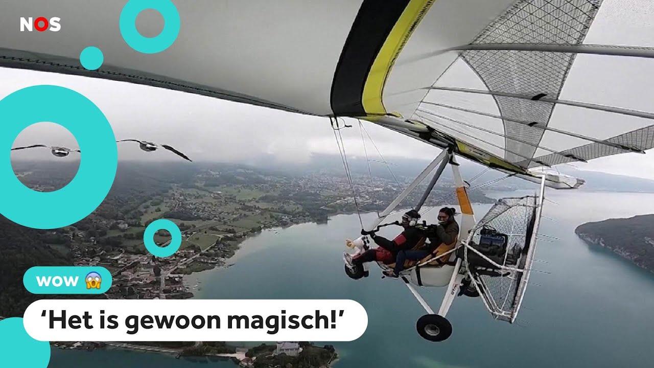 Download Vrouw vliegt door de lucht met een groep ganzen