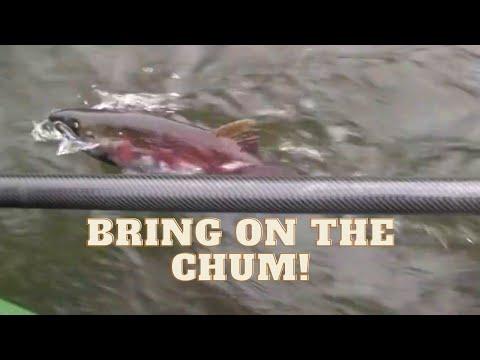 Green River Chum Float