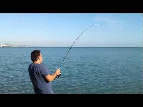 Pesca Spinning Mare: esche artificiali
