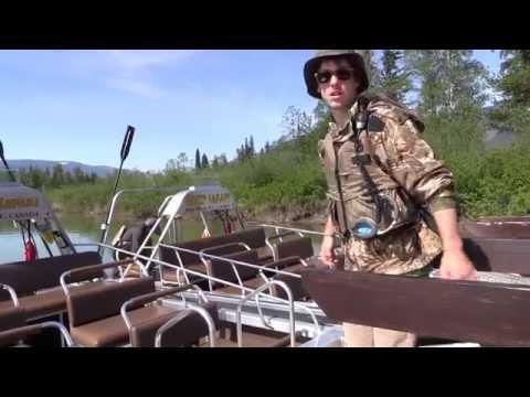 BEAR Spotting & RIVER Race.  Blue River BC  Canada 2016