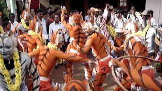 Udupi Pili Vesha the Tiger Dance