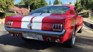 1966 Mustang Gt350 Walk Around