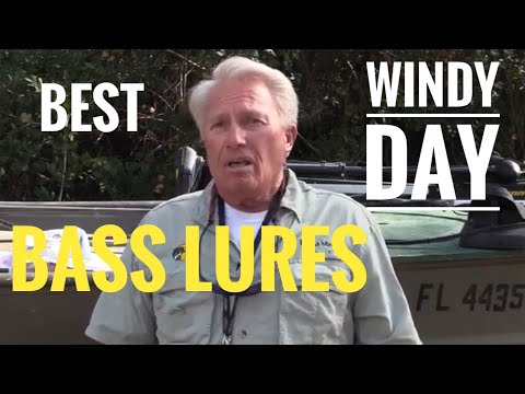 Best Bass Lures For A Windy Day