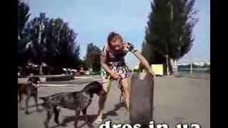 Наобычная дрессировка - Колеса, или занятия для ленивых-))(дрессировка собаки, обучение собаки преодалевать необычные препятствия, в виде колес. Или дрессировка..., 2013-06-27T09:51:02.000Z)
