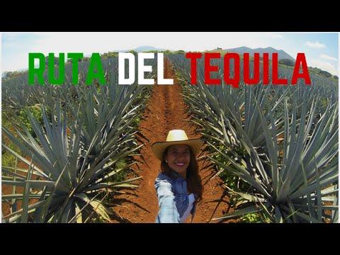 LA RUTA DEL TEQUILA  | MARIEL DEVIAJE