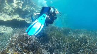 Diving in Kassiopi Corfu 2015