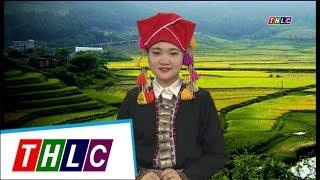 Thời sự tiếng Dao (phát sóng từ 15/6/2017) | THLC