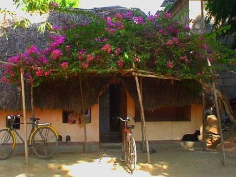 Village house, Chennai
