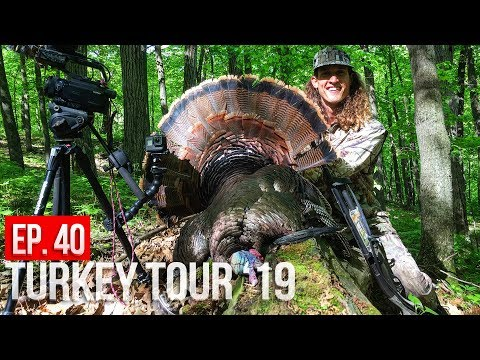 MINNESOTA PUBLIC LAND GOBBLER! | Turkey Tour Finale