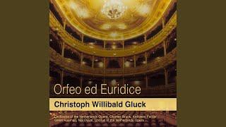 "Orfeo ed Euridice, Act II: ""Oh voi, ombre felici"" (Orfeo, Chorus)"