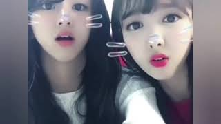 Twice's Chaeyoung & Nayeon funny cute KWAI App