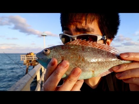 WORST Fishing Video Ever??? (Watch at your Own Discretion)
