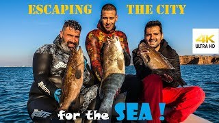 Spearfishing 🇬🇷| ESCAPING the CITY for the SEA🌊CATCH CLEAN FILLET🔪White Grouper [4K] ✅