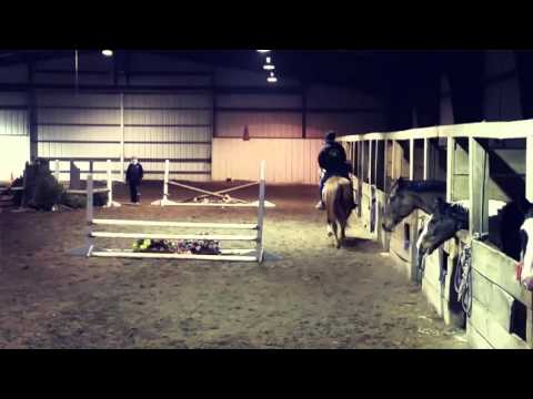 Chic & Dave first jump lesson, Sushi & Jubilee first ride