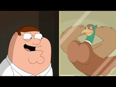 Family Guy - Bird Watching
