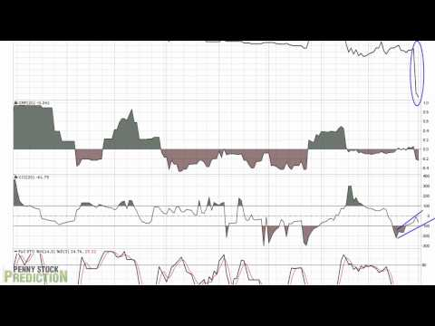 Labor Smart (LTNC) Video Stock Chart