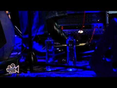 Harry Manx - Voodoo Child (Live in Sydney) | Moshcam
