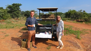 A very special Moṁent - Cheetah close up - Wild animals Game Drive - South Africa (German Video)