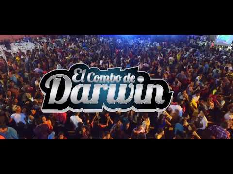 Cerveza negra - El Combo de Darwin Video 2017