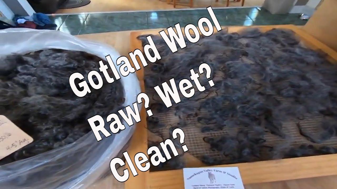 Raw, wet and washed wool. https://youtu.be/AH7VKseLJbI