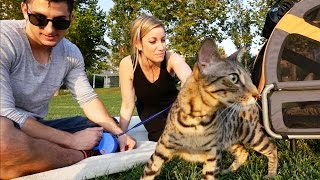 RELEASING OUR CATS INTO THE WILD!!!
