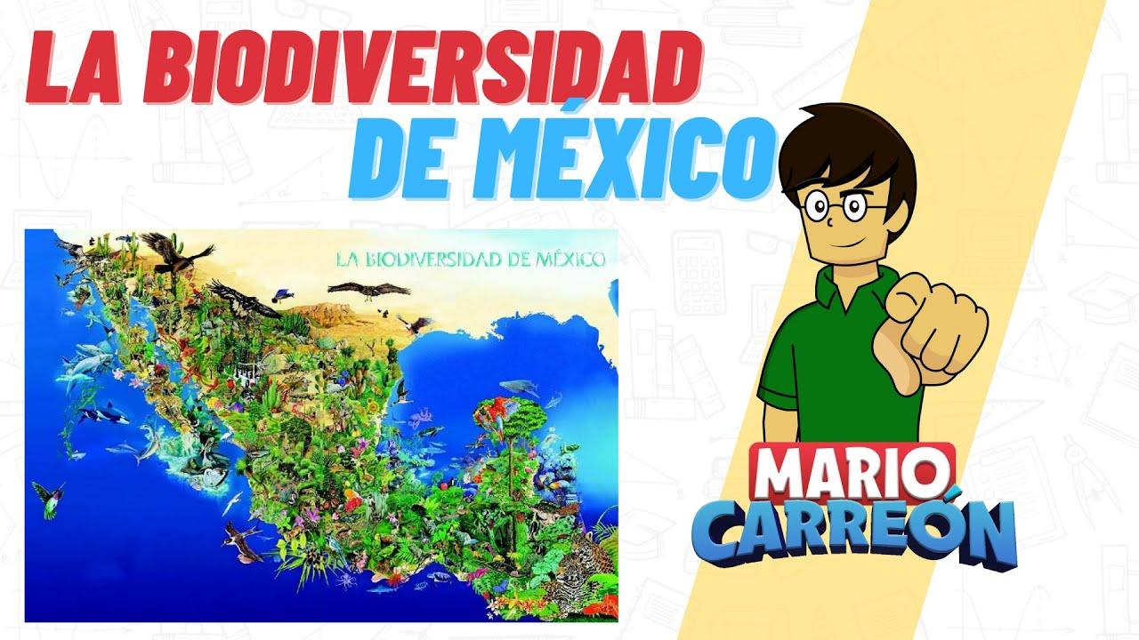 Download La Biodiversidad de México