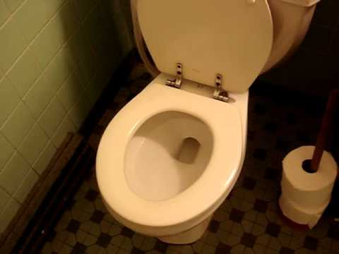 Gerber powerflush house toilet youtube for Gerbiere toit