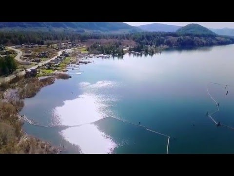 Aerial Drone Footage Lake Cowichan BC