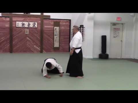 Ryoichi Kinoshita Sensei – Aikijuku Dojo Dojo Biraki