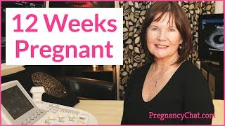 """""""12 Weeks Pregnant"""" by PregnancyChat.com @PregChat"""