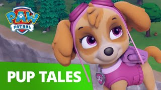 PAW Patrol | Pup Tales #84 | Rescue Episode! | PAW Patrol Official & Friends