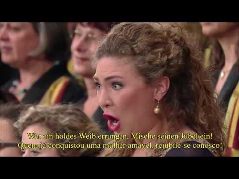 9ª Sinfonia Ode A Alegria - An die Freude-