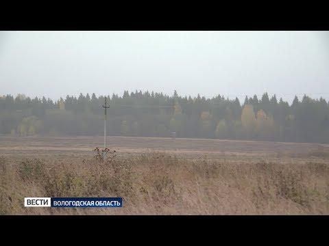 «Вологодский гектар»: наибольшим спросом пользуется Вожегодский район