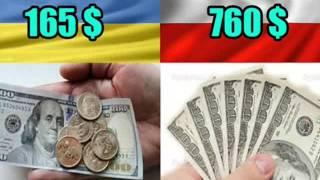 Сравнение Украины и Польши