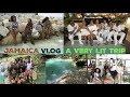 Jamaica Vlog | A very lit trip🇯🇲
