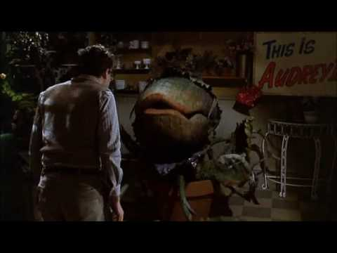 Feed Me -Little Shop of Horrors