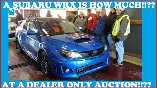 A SUBARU WRX IS HOW MUCH AT A DEALER AUCTION!!???