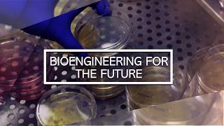 CU Denver Bioengineering: Pulmonary Biomechanics