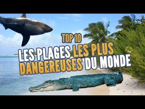 Top 10 des Plages les plus dangereuses (Topito TV)