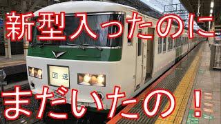 【東京駅に国鉄型】185系踊り子号を乗り通し!伊豆急下田→東京 乗車記