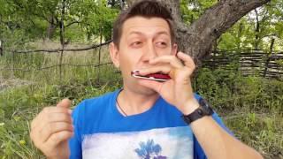 Передув на шестом отверстии. Урок №11.  Overbend of a harmonica