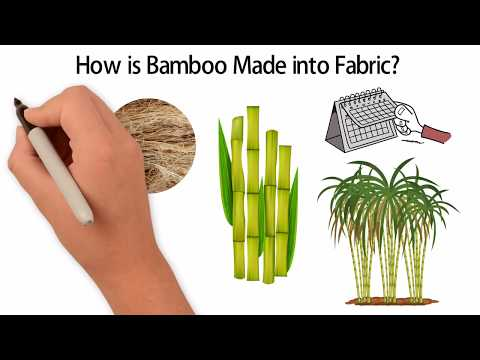 How is Bamboo Fabric Made | Bamboo Detective