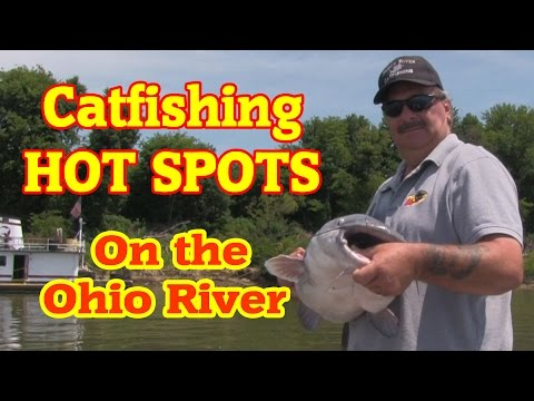 Big Catfish caught from the Ohio river from YouTube · High Definition · Duration:  2 minutes 44 seconds  · 9,000+ views · uploaded on 10/13/2013 · uploaded by monsterrodholders
