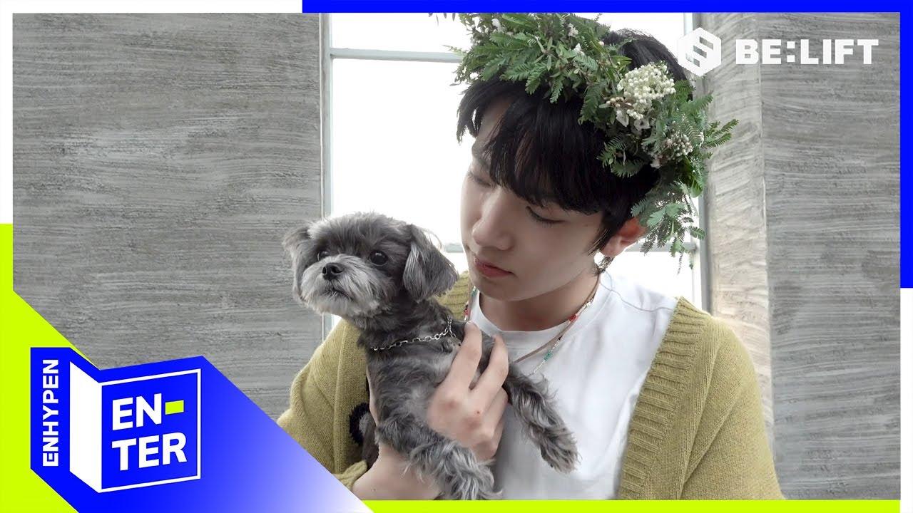 [EN-TER key] Playing with Puppies -ENHYPEN (엔하이픈) (ENG/JPN)