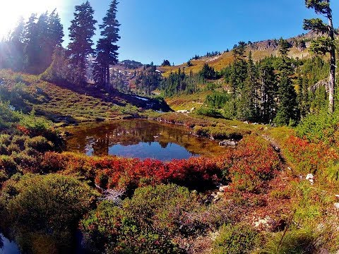 Travel to United States: Olympic National Park, Washington, USA