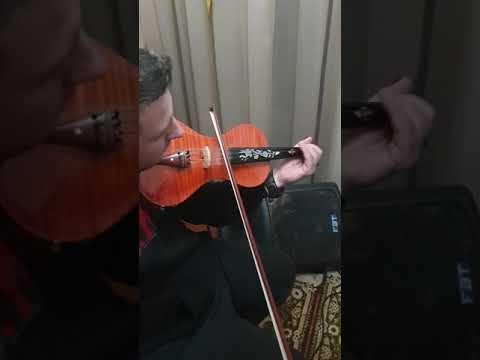 Electric violins S vlastaris