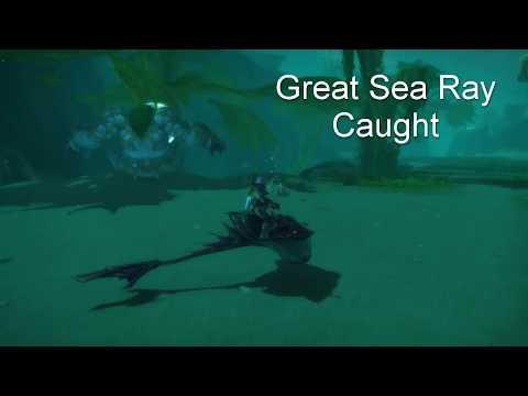 Great Sea Ray Mount Caught