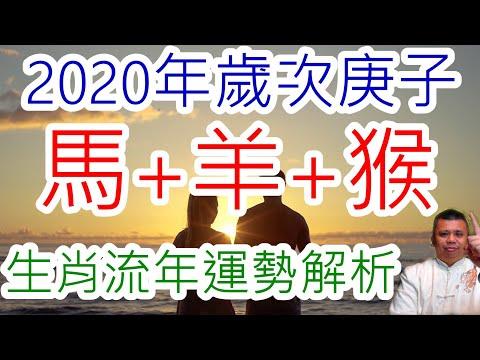 2020.2020