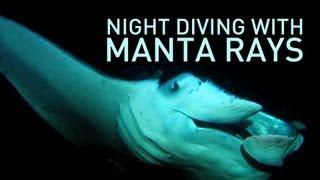 night diving with manta rays   underh2o   pbs digital studios
