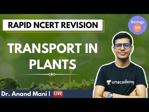 Transport In Plants | Rapid NCERT Revision | NEET UG | Biology 101 | Dr Anand Mani